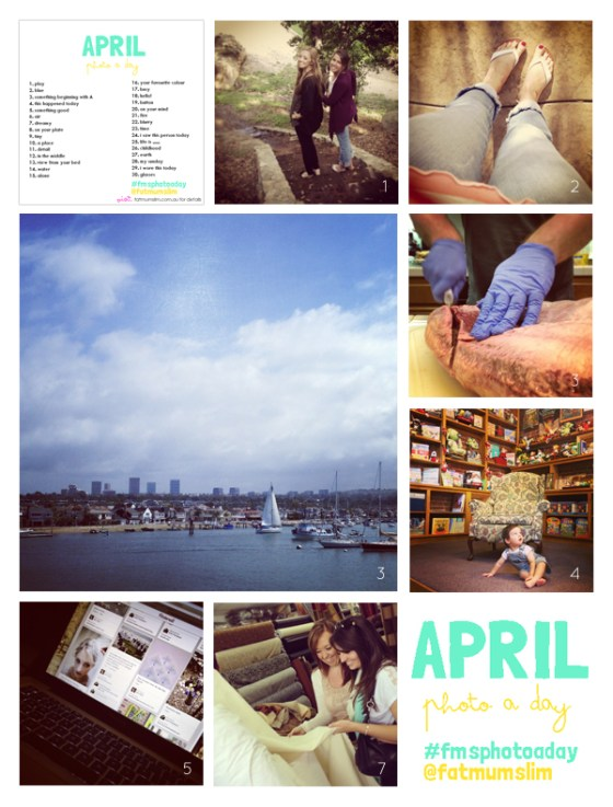 fmsphotoaday-april-2013-collage1