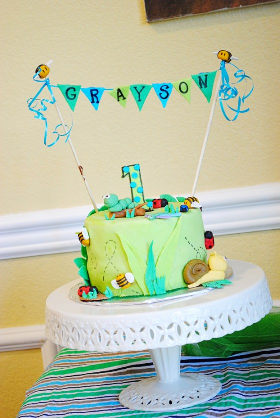 graysons-bug-birthday-party-photography_0804