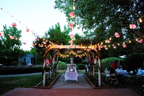amie-cherry-blossom-bridal-shower-backyard_0598
