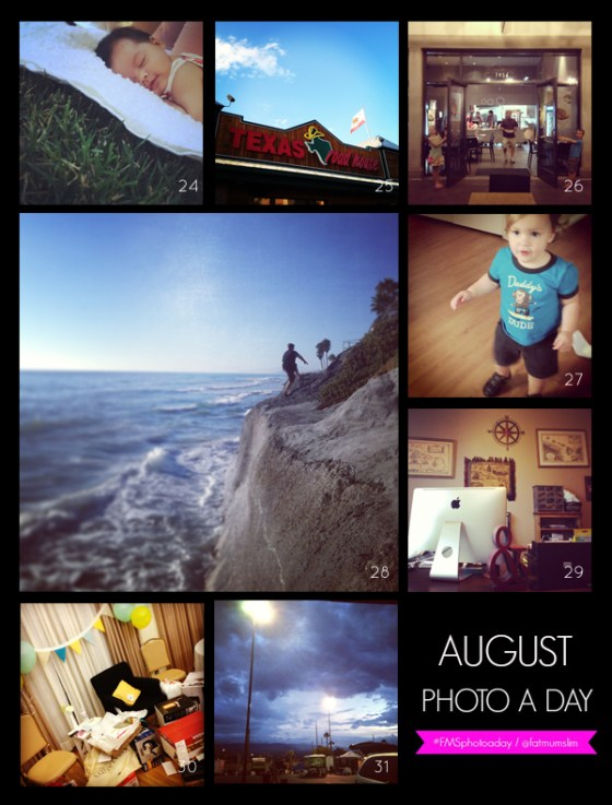 fmsphotoaday-august-2013-collage4
