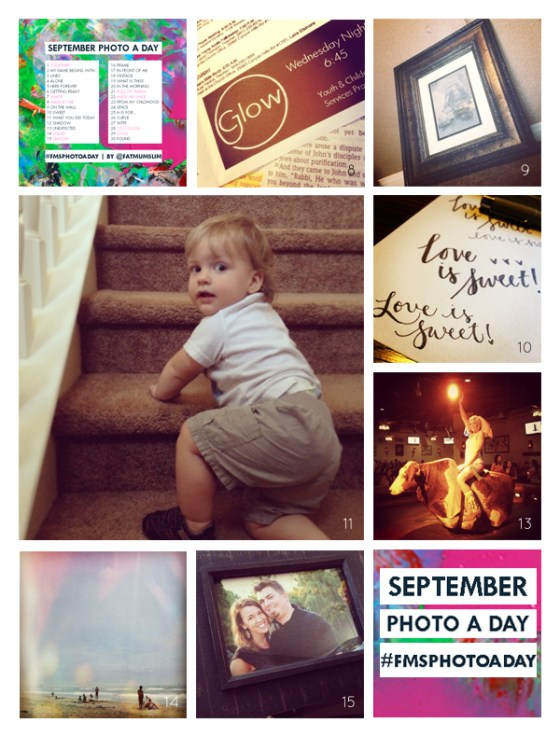 fmsphotoaday-sept-2013-collage2