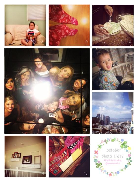 fmsphotoaday-oct-2013-collage2
