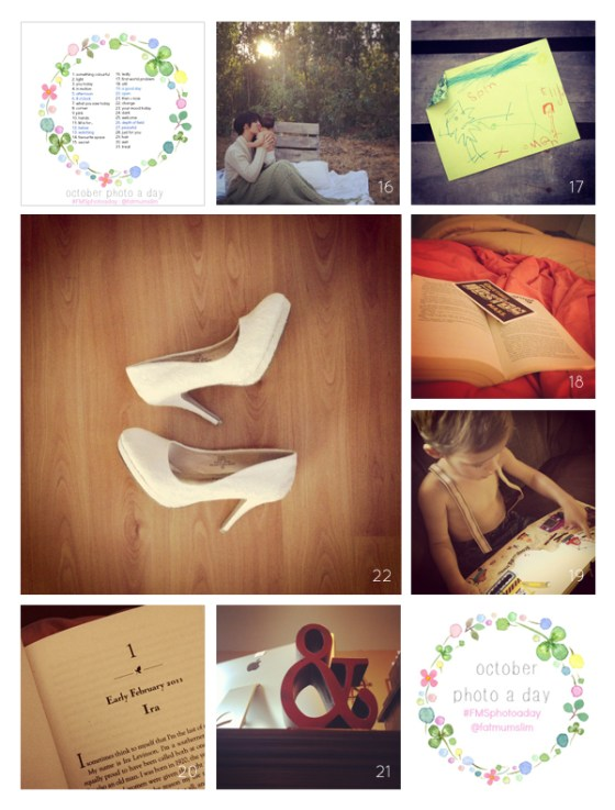 fmsphotoaday-oct-2013-collage3