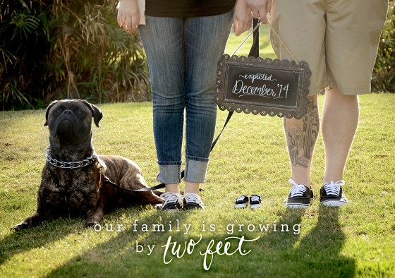 your new friend sam pregnancy announcement calligraphy photo card growing by two feet