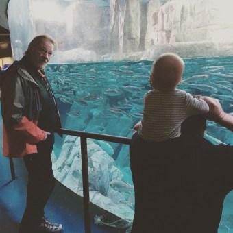 isaiah-8-months-aquarium-2