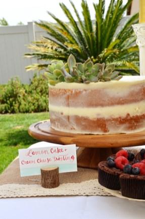 Shabby Chic Woodsy Baby Shower Cake Table Naked Cake
