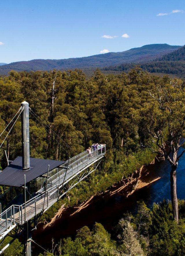 The Airwalk over the Hartz Forest