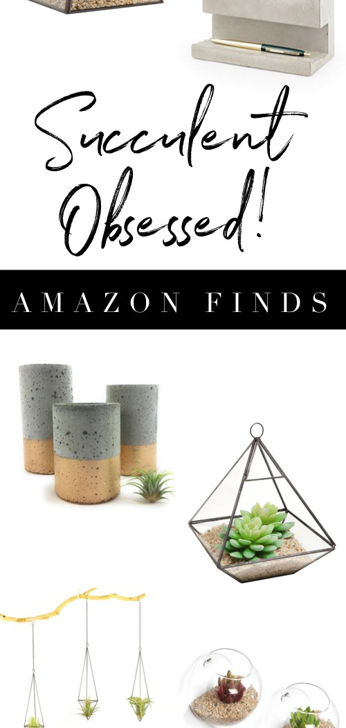 Surprisingly Awesome Amazon Finds – Vol. 1 – Succulent Obsessed