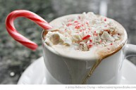 peppermint-hot-chocolate-11