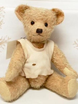 Albert by Sue Fenton - Bruins Bears