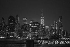 Brooklyn Bridge Park   © Samara Abramson