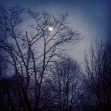 Another photo of the moon.