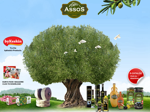 土耳其AssoS純橄欖手工皂
