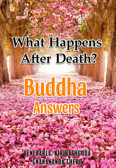 What-Happens-After-Death--Buddha's-Answers