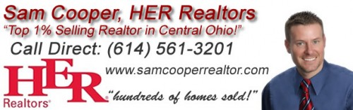 Pickerington Home Sales, Haaf Farms Sales 2016