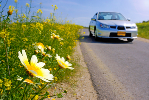 Springtime | Tulsa Auto Care