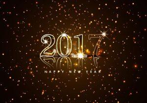 scheiding - 2017-happy-new-year-8