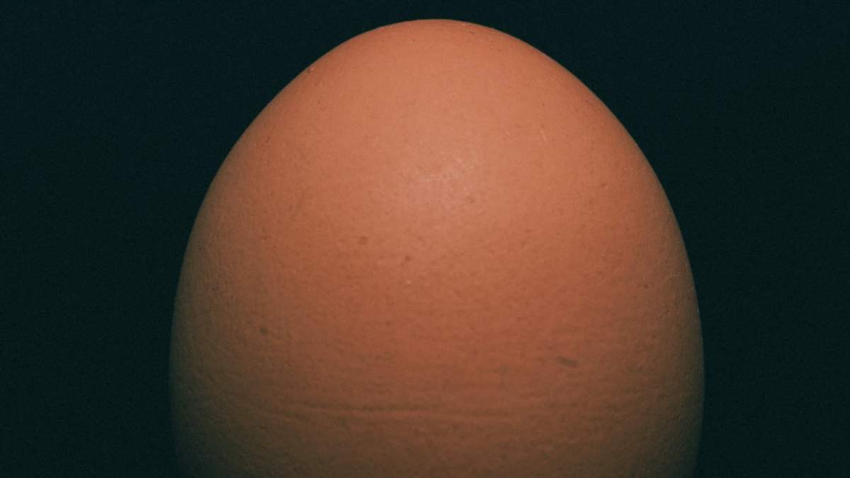 """Instagram egg is worth """"at least $10M"""" 1"""