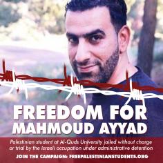 mahmoud-ayyad