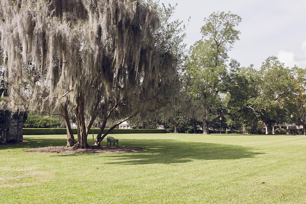 3 reasons why you should visit Pebble Hill Plantation