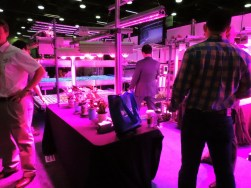 Grow light display
