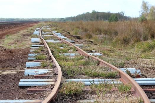 Tory kolejowe, symbolizujące ograniczenia w i nawykowe myślenie
