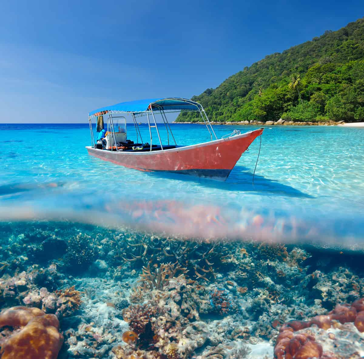 Samovar---Filippine