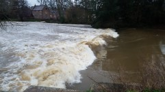 Weir on the River Stour Nr Merley/Canford Magna