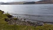Loch Awe shoreline