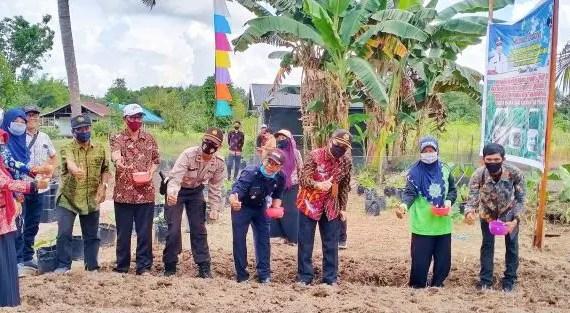 Dinas Ketahanan Pangan Tanam Bibit Sorgum Perdana di Desa Rawa Sari