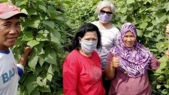 Ketua DPRD Kotim beri semangat masyarakat kembangkan pertanian