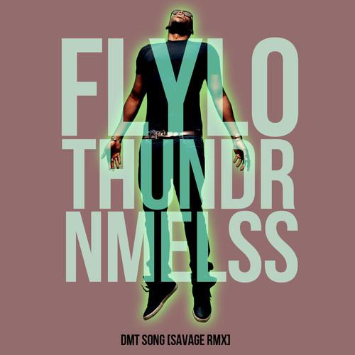Flying Lotus + Thundercat + NAMELESS - DMT Song [SavageRMX]
