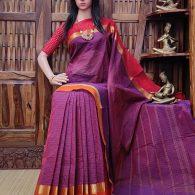 Shanti - South Cotton Saree