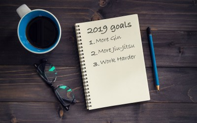 My 2018 Yearly Report & New Year Resolutions