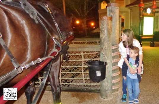 Horse-drawn Carriage Rides at Port Orleans Marina