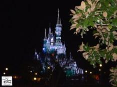 Holiday Castle Lights