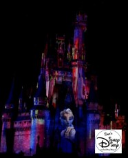 Sams Disney Diary 37 Celebrate The Magic (14)
