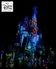 Sams Disney Diary 37 Celebrate The Magic (15)