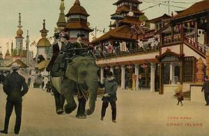 Elephant Rides at the Real Luna Park - Cony Island