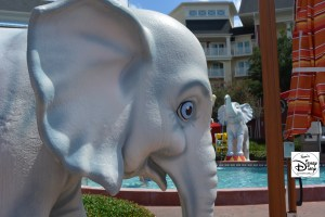 Elephants at the Pool?  Why?