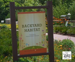 Epcot Flower and Garden Festival - Backyard Garden