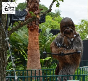 """Star Wars Weekends 2016 - Chewy Backstage prep for """"A Galaxy Far, Far Away"""" stage show."""