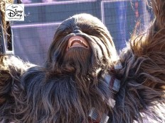 A Galaxy Far, Far Away Stage Show - Chewy up close.