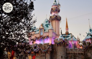 SamsDisneyDiary 82: Disneyland Never miss a castle picture