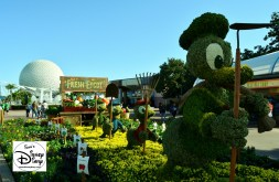 The 2017 Epcot International Flower and Garden Festival - Epcot Fresh featuring Donald and his nephews