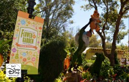 The 2017 Epcot International Flower and Garden Festival - Simba - Near the African Outpost