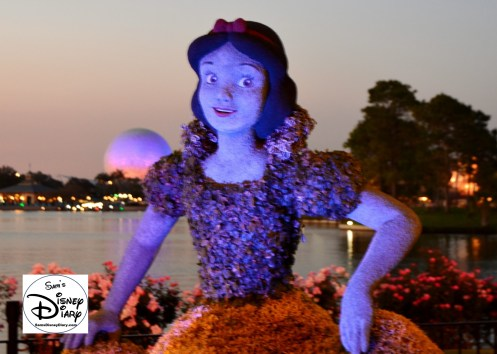 The 2017 Epcot International Flower and Garden Festival - Snow White at dusk, the lighting effects for all of the topiaries are beautiful