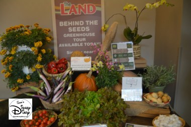 The 2017 Epcot International Flower and Garden Festival - A display for the Behind the Seeds Tour near Soarin