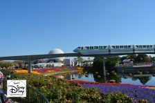 The 2017 Epcot International Flower and Garden Festival - Monorail over Festival Blooms