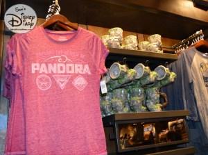 More merchandise inside Windtraders